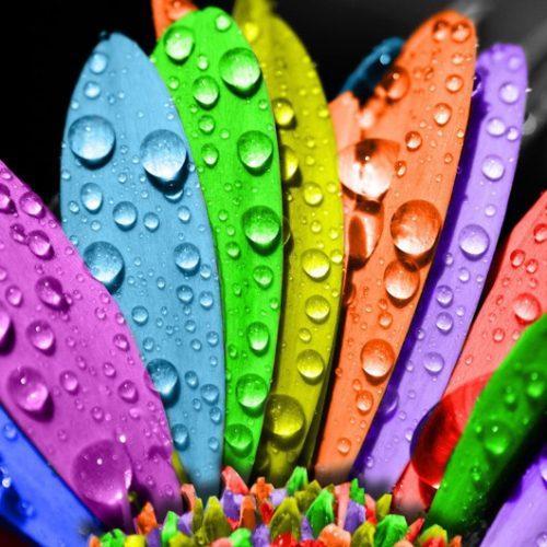 renklerin-anlami-blog