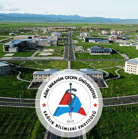 agrı-ibrahim-cecen-universitesi
