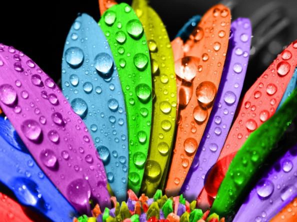 renklerin-anlami